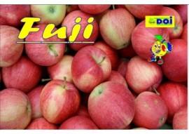 Fuji Extra