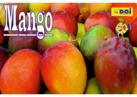 Mango Barco