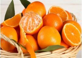 Naranja Mesa 1º