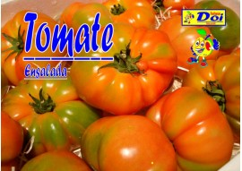 Tomate G