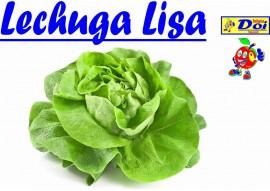 Lechuga Lisa