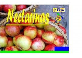 Nectarina Blanca Extra