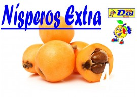 Níspero Extra
